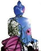 0 - prasada meditatie